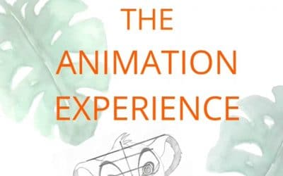 Animation experience 🎨