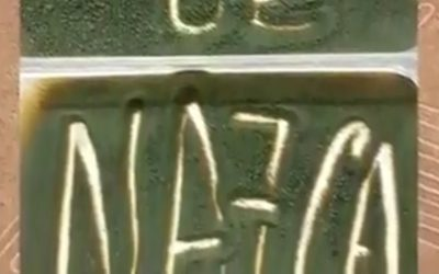 Línies de Nazca 🎮